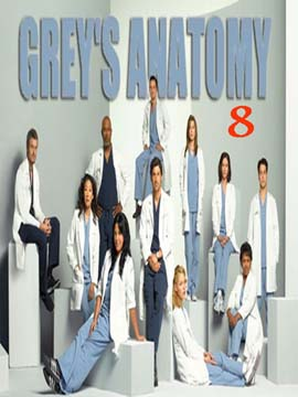 Grey's Anatomy - The Complete Season Eight