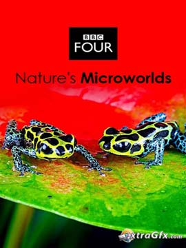 Nature's Microworlds