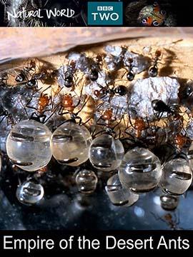 Empire of the Desert Ants