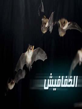 الخفافيش