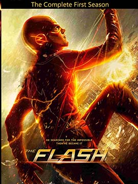 The Flash - The Complete Season One