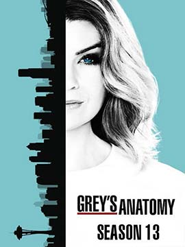 Grey's Anatomy - The Complete Season 13