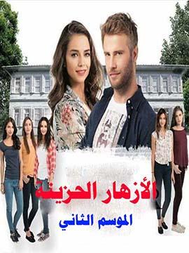 الأزهار الحزينة - الموسم الثاني - مترجم