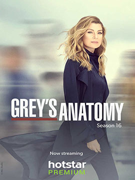 Grey's Anatomy - The Complete Season 16